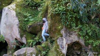 Sintra - Quinta da Regaleira 14