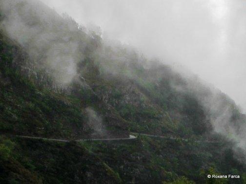 Drumuri prin ceata şi nori