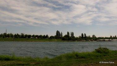 Dunarea in Viena IMG_6021