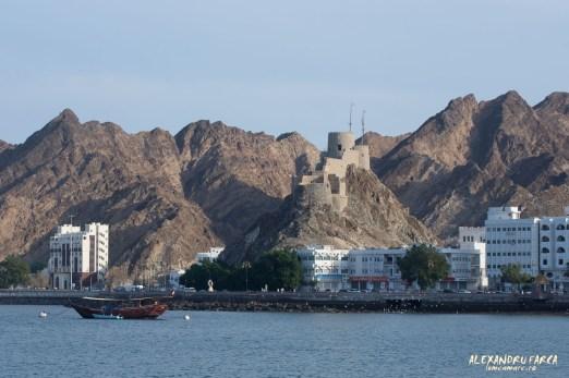Oman_Muscat-3003