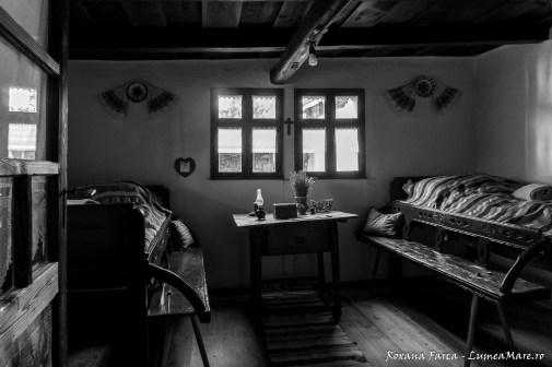 casa-tara-beiusului-6697