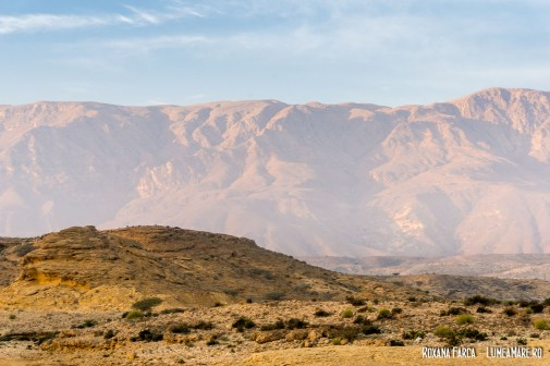 Oman-White-Sands-9228