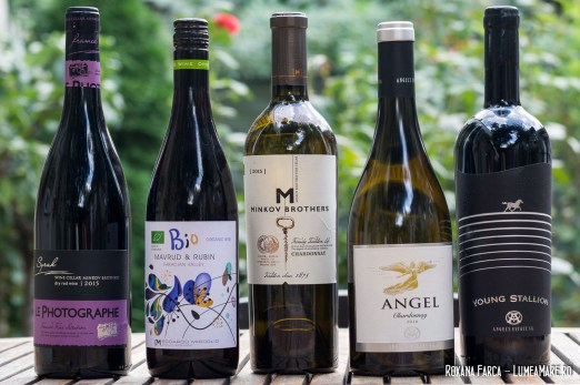 Balcic-vinuri-Bulgaria-6437