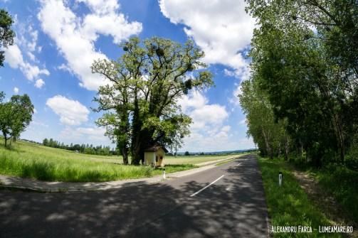 Donauradweg de la Au la Grein