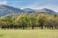 Marginimea-Sibiului-9852