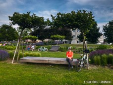 Cu bicicleta prin Tulln, pe inflorita faleza
