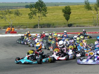 Series Rotax 2014 Karting Correcaminos (3)