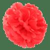Røde pompoms
