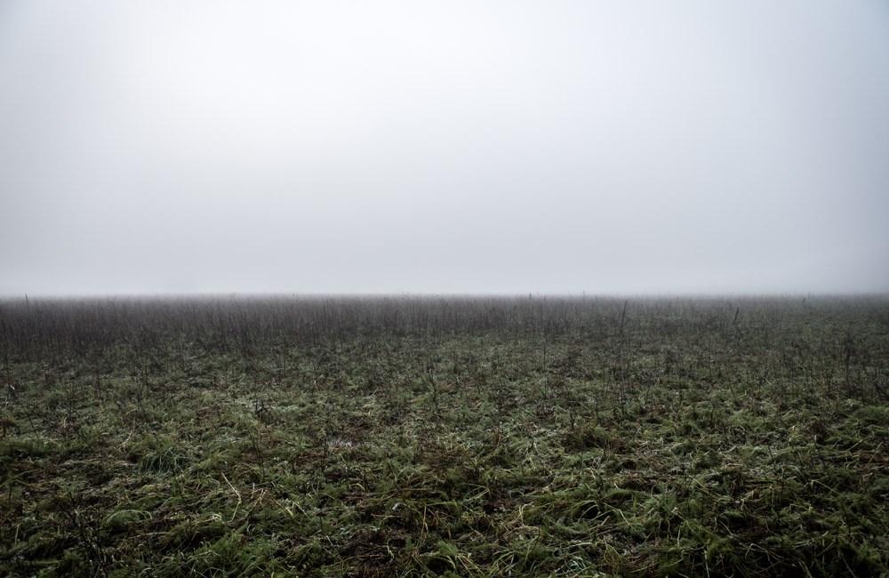 Landschap in de mist #2