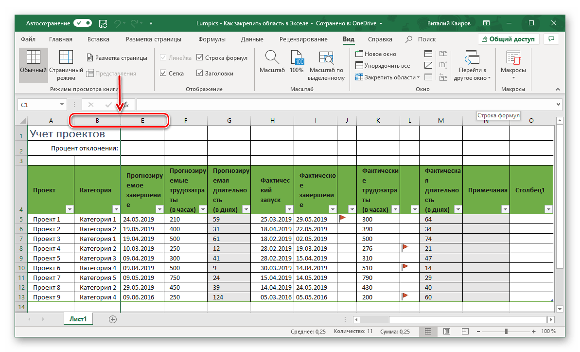 Resultatet av framgångsrik fixering av kolumner i Microsoft Excel-tabellen