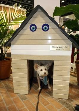 Doghouse by Stonexhange.