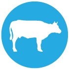 icon_cow2