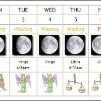 Zodiactivities for April 1-7, 2012 ~ Spring Cleaning Tips