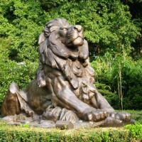 The Leo Garden