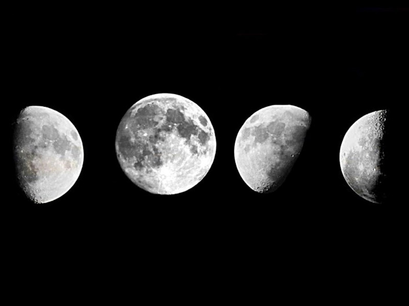 The moon: one half of the earth-moon system showing phases of the moon