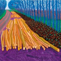 David hockney and his iPad drawings