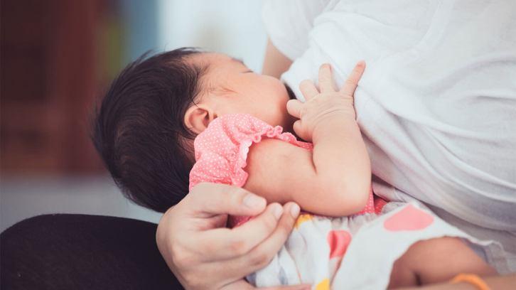 Bayi Asyik Menyusu