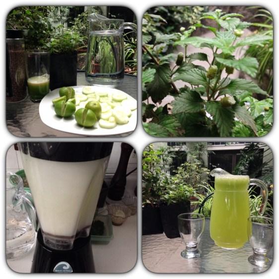 Preparacion de agua alcalina