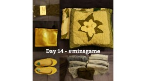Minimalist Game - Day 14