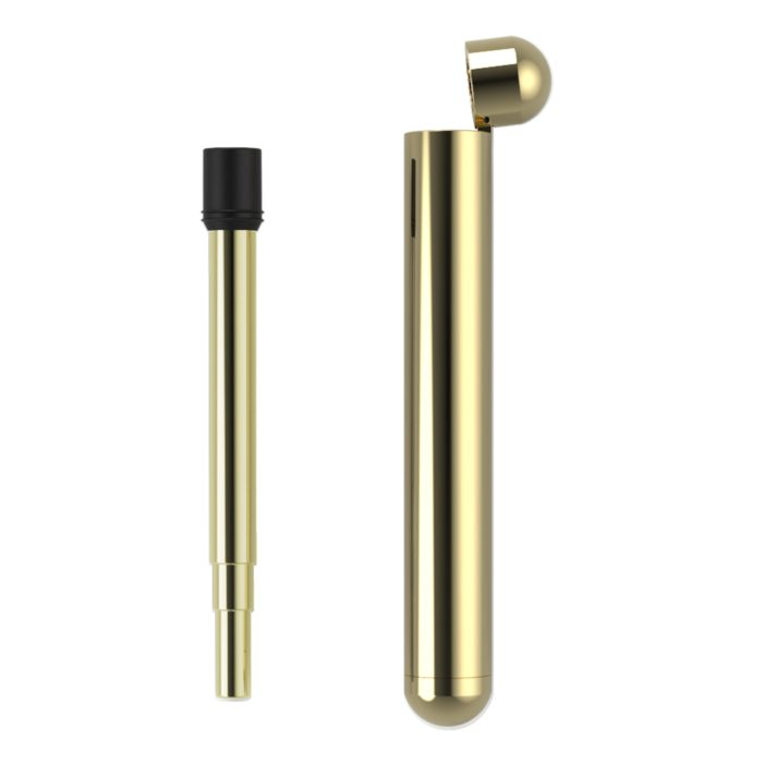 Telescopic Stainless Steel Straw with Gold Case