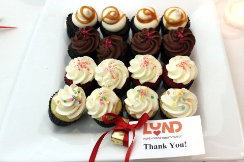 Thank you to Adoption Picnic Celebration Supporters!