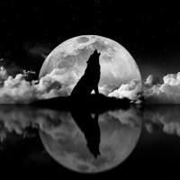 Le vrai visage de la  #lune noire  #Dark #moon de la #Nouvelle Lune