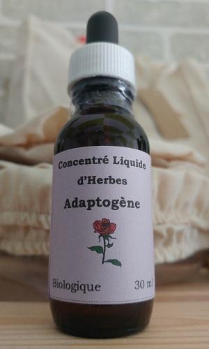 Les jardins Herbes de vie - Concentré liquide d'Herbes Adaptogene - L'Univert Écolo