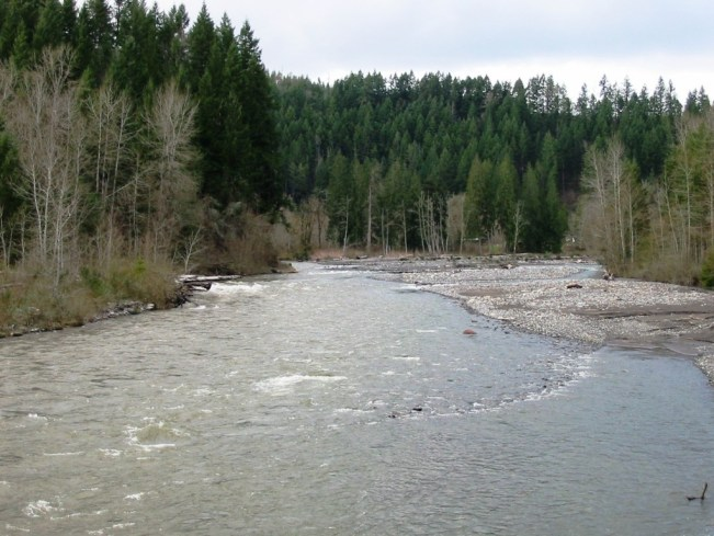 Carbon River Orting, WA