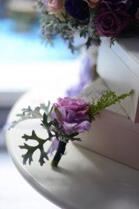 Lila güllü yaka çiçeği