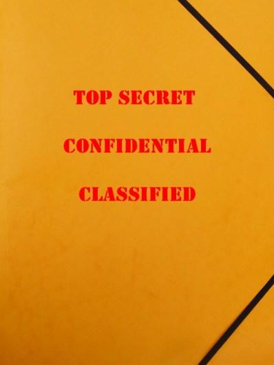 Top secret pesäpäivä