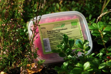 Päijät-Hämeen Luomun herkulliset hapantuotteet maistuvat myös smoothiessa