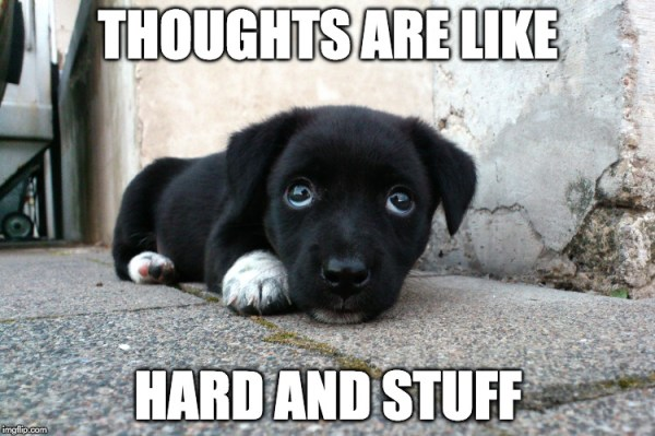 Thoughts puppy