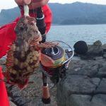 根魚ルアー釣り!ロックフィッシュ(カサゴ)が爆釣したルアーを紹介