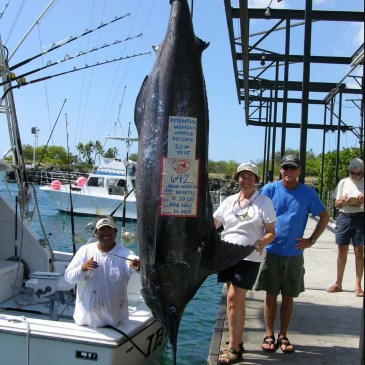 Missed marlin record/new marlin records