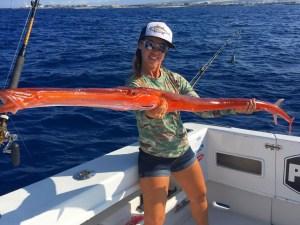 redcornetfish