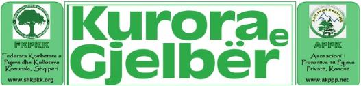 kurora e gjelber