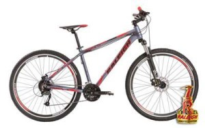 Raleigh 4.0 Rod. 27,5 y 29