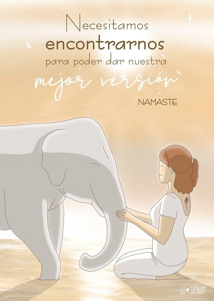 meditando elefante