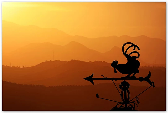 Silent rooster | sunrise? sunset? you decide. they are both equally gorgeous.