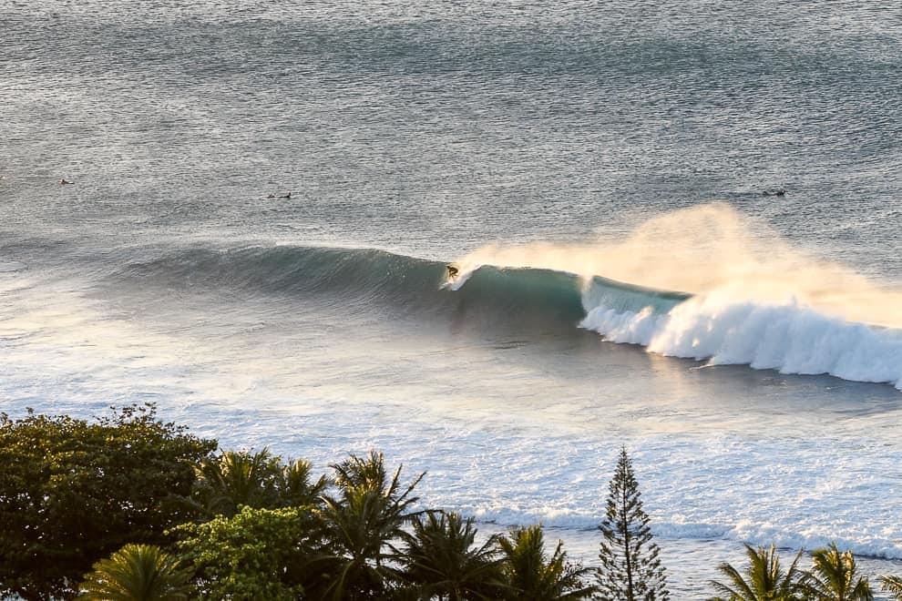 endless summer surf blog