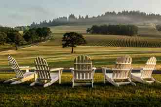 Stoller Family Estate, Oregon   wineries with a view