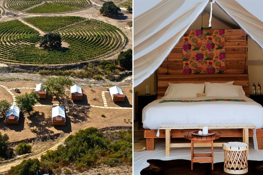 Cuatro Cuatros Glamping / Guadalupe Valley, Mexico / 24 Hours in Baja's Wine Country