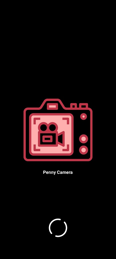 Screenshot of Penny Camera