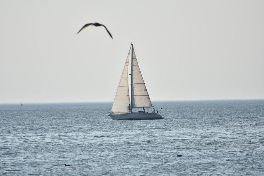 Fernando Pessoa A Ostende Et A Lille Lusojornal