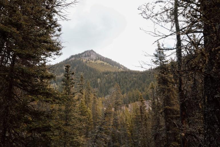 BC mountains