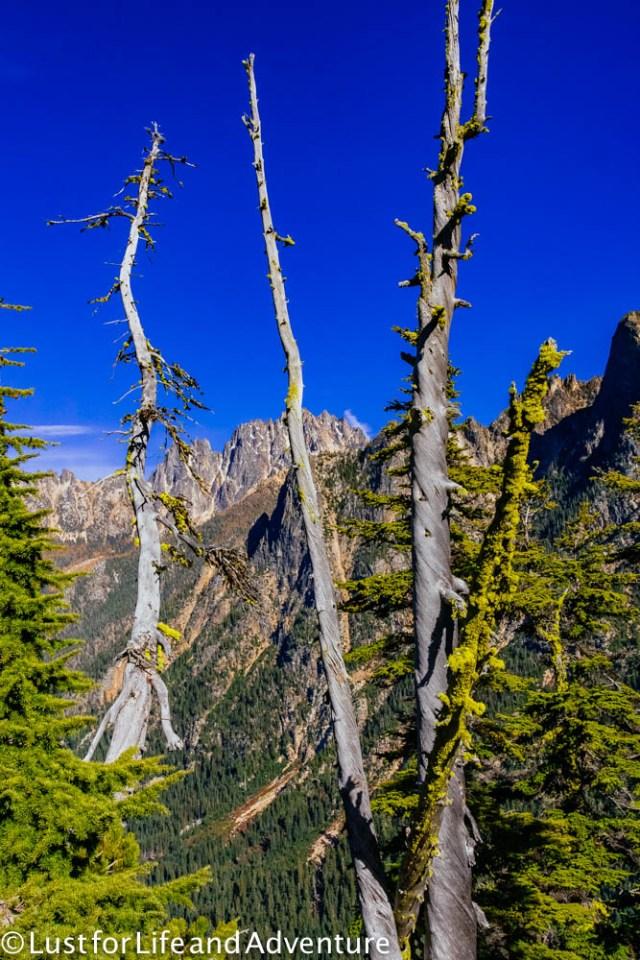 north-cascades-219