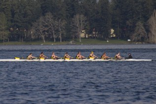 The 2012 Men's squad defeats UPS by a landslide to win the Meyer Cup. (From Stern to Bow: Coxswain Drew Johnson; Kyle Schroeder, Nate Lee, Steven Rystrom, Mitch Brown, Charlie Johnson, Ryan Sudenberg, Bryan Pascoe, Stephen Strom)