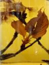 Awetan basah bunga sakura ini salah satu koleksi di herbarium Kebun Raya Bogor. Cairan pengawetnya terdiri dari alkohol dan aquades. Untuk jenis anggrek, pakai gliserin. Ada juga awetan labu air yang biasa muncul sebagai tempat minum di film-film kungfu Cina, tapi lupa difoto.