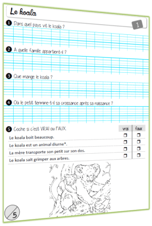 rallye lecture documentaire Animaux questionnaire