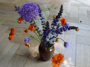 Flowers brought to Meeting 7th June 2015